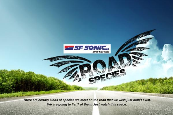SFSonic-road-species